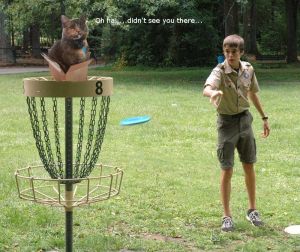 Cat in Box frisbee golf